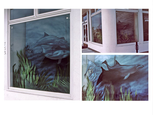 Dolphin Window Display