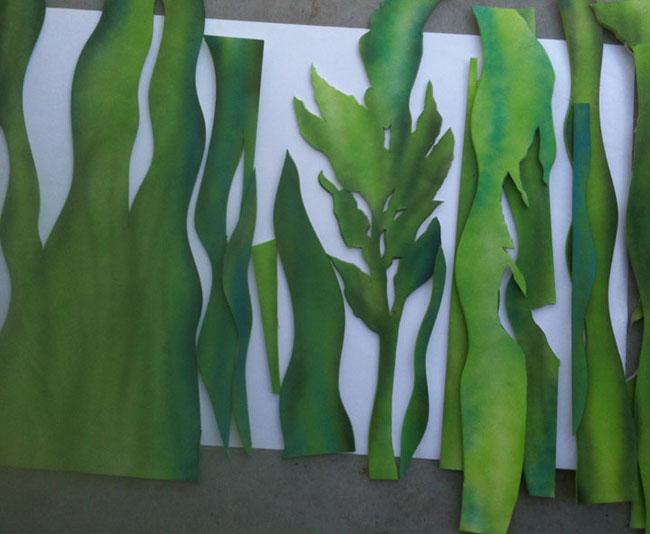 Seaweed for window